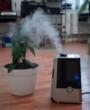 Dlaczego w każdym domu powinien być oczyszczacz powietrza